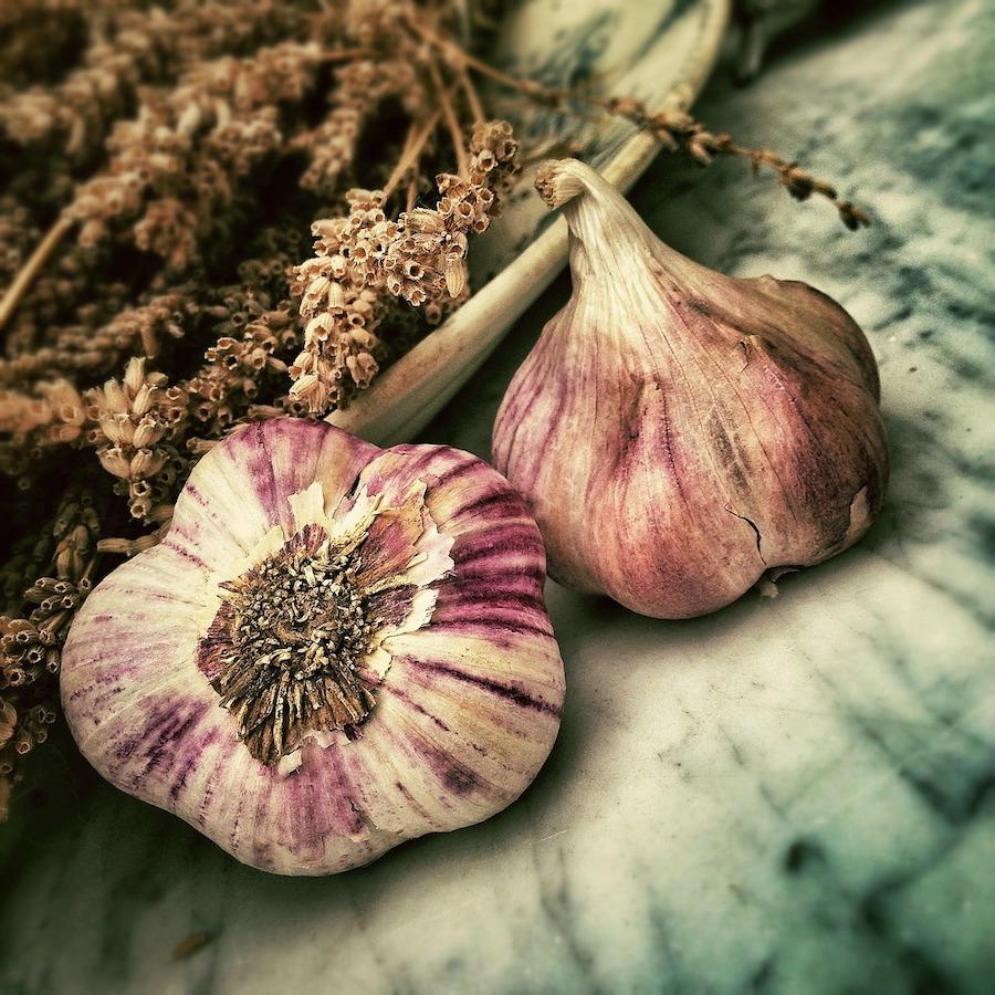 red garlic bulbs, fresh garlic