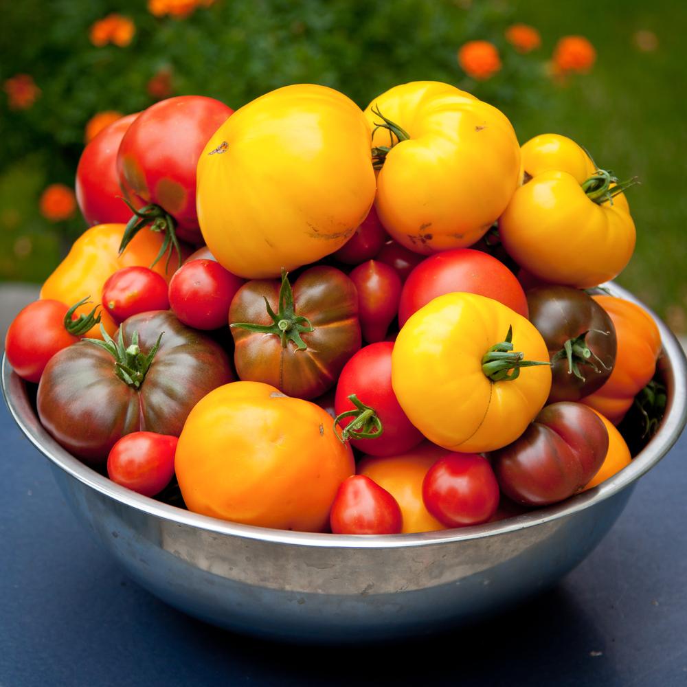 tomato benefits, tomato nutrients